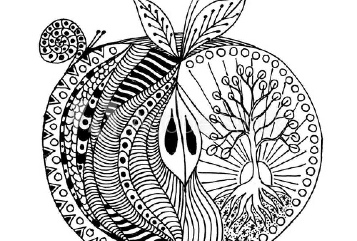 Botanical fruit mandala - student project