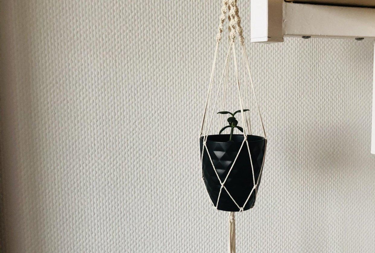 Plant Hanger - student project