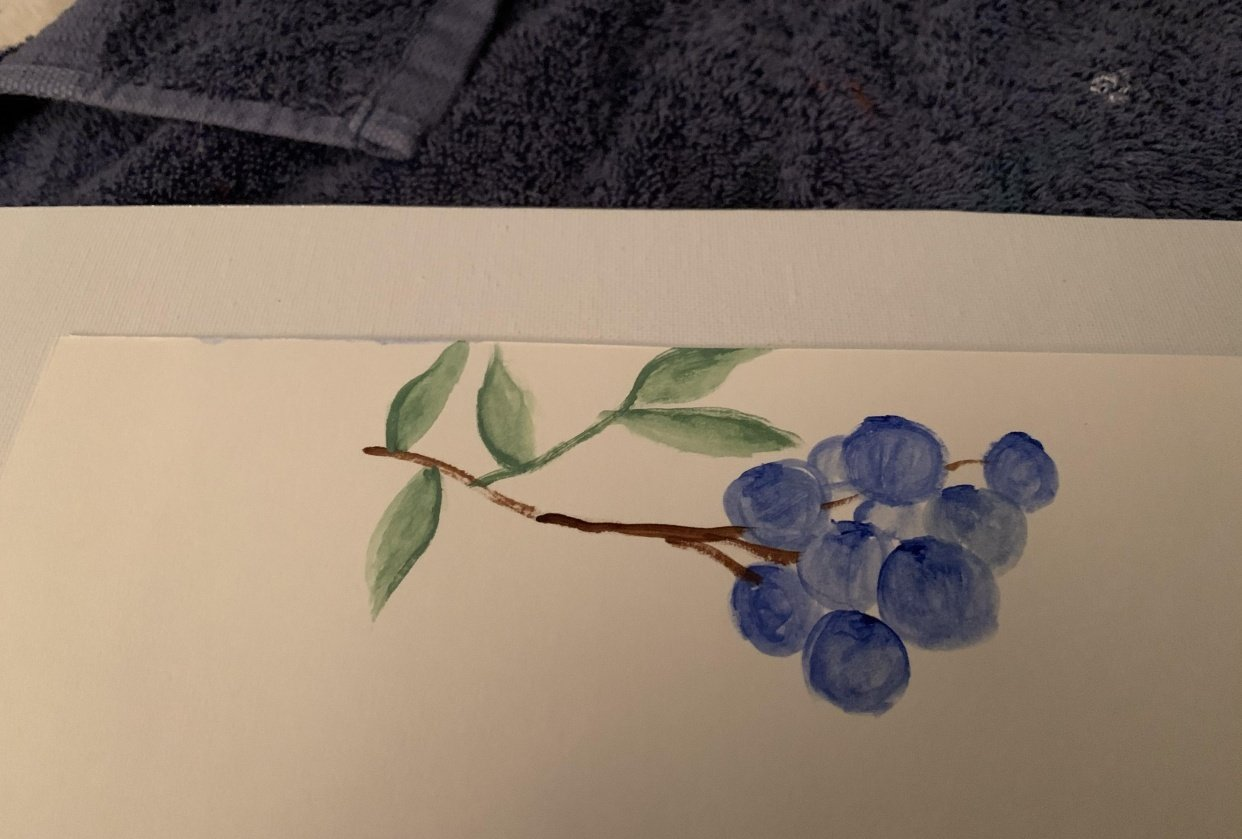 Blueberries with gradient - student project