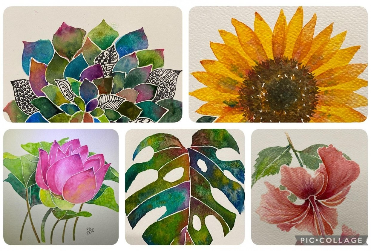 Watercolor Botanicals - student project