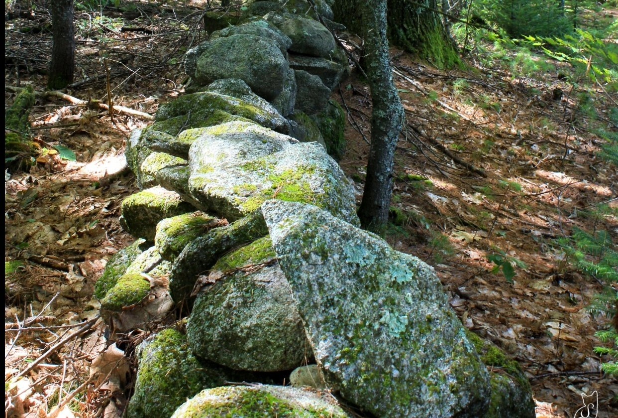 Stone Wall - student project