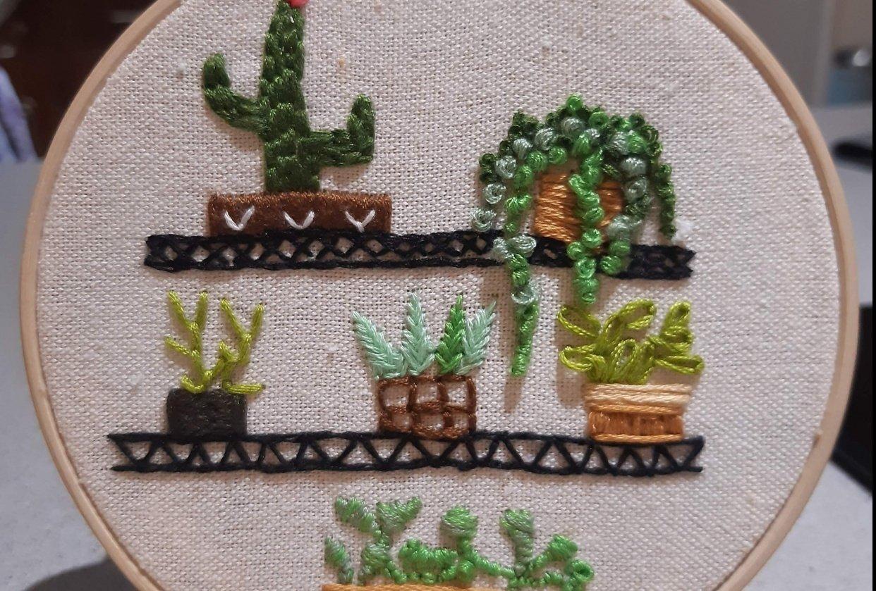 Plants on a shelf - student project