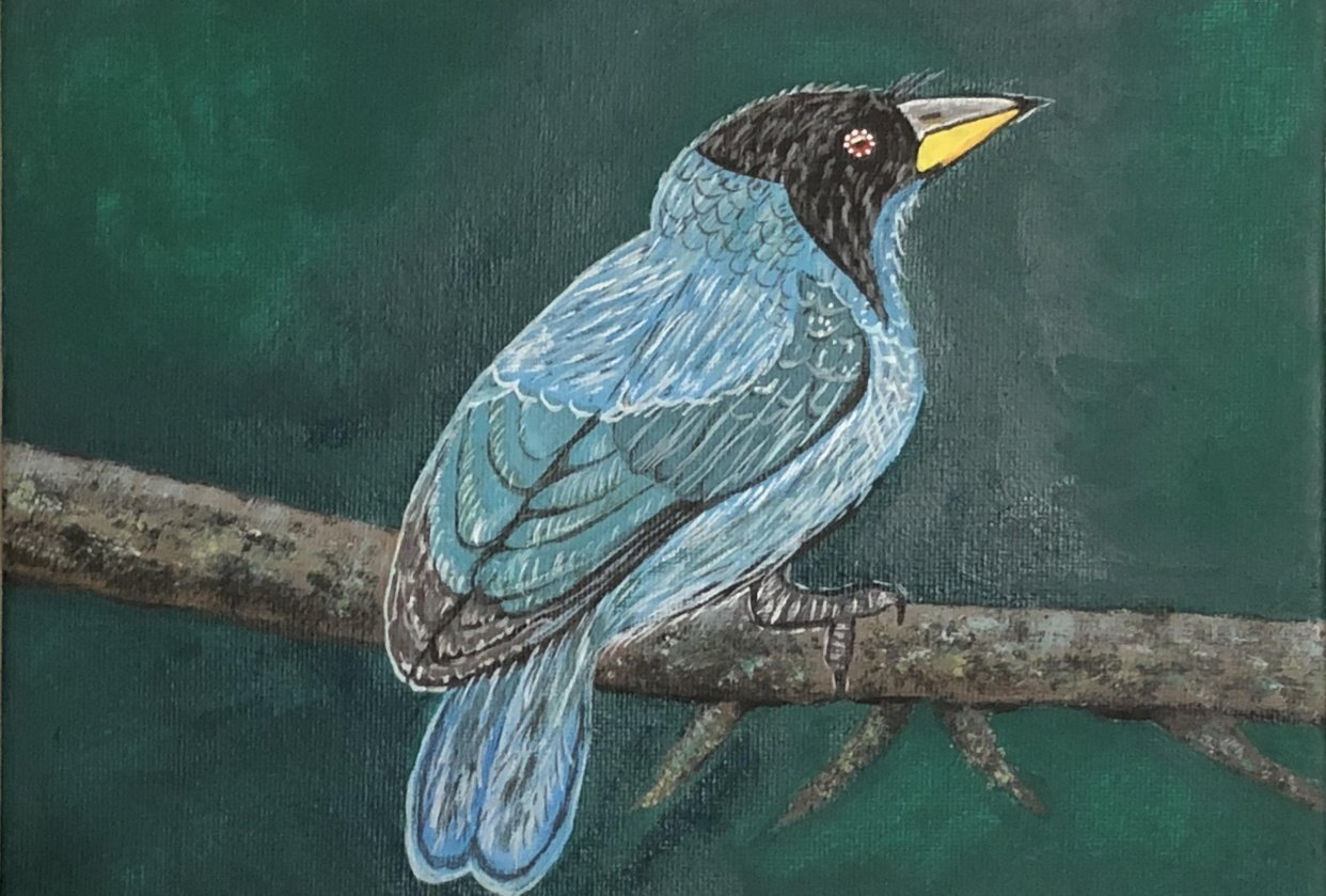 Blue Bird in Acrylics - student project