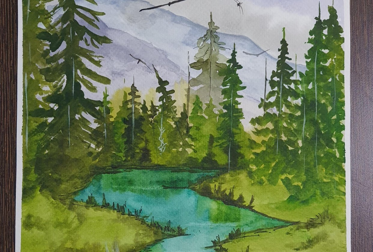 Green forests - student project