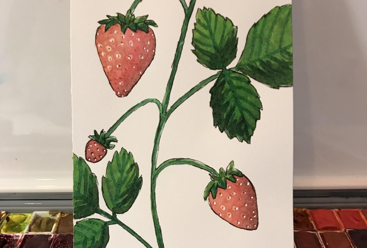 Strawberry Painting - student project