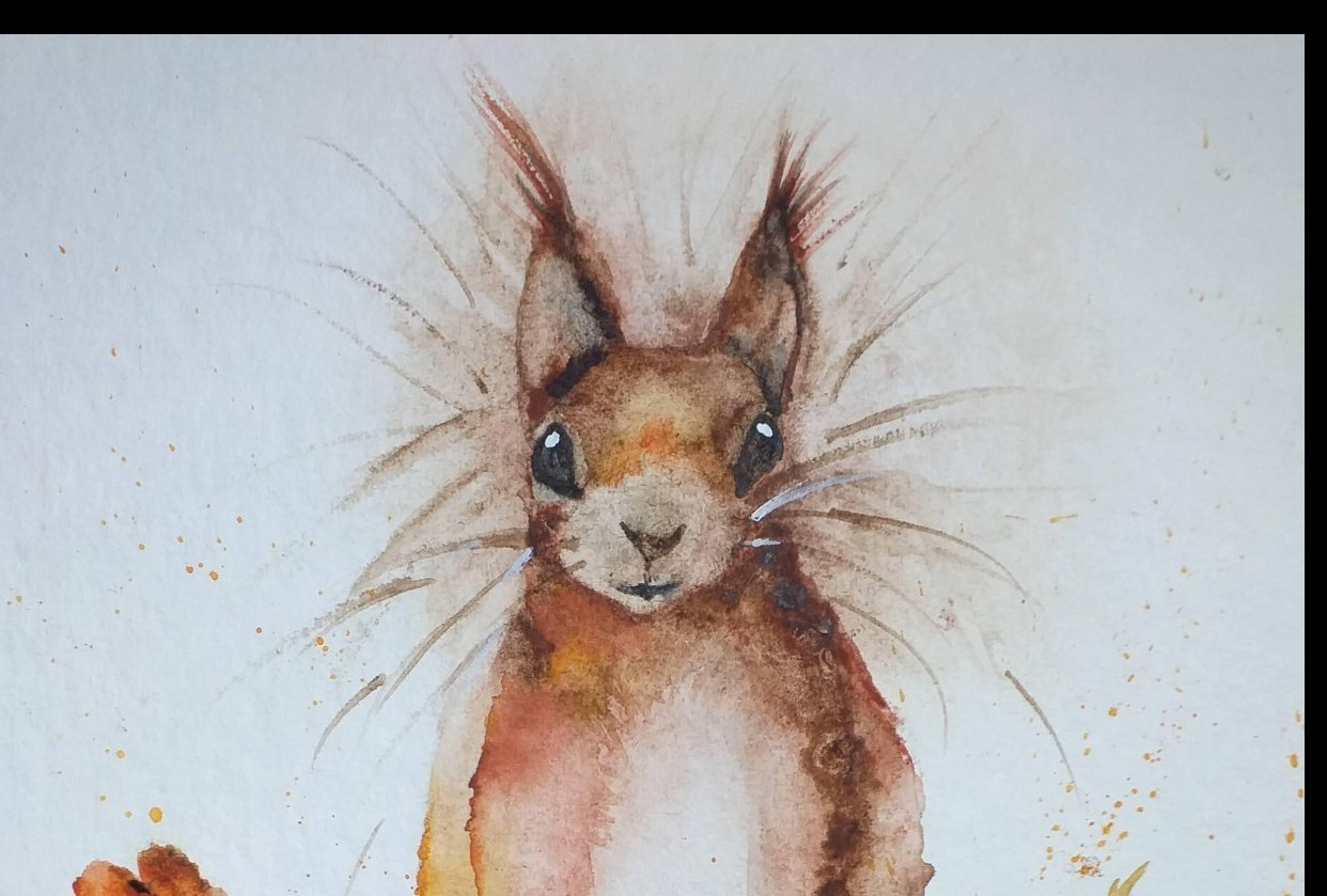 Sidney the Squirrel - student project