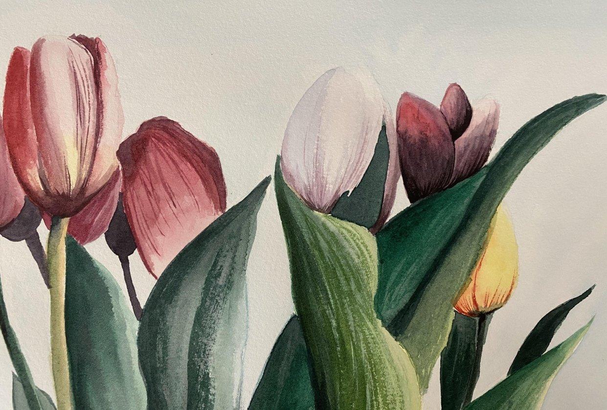 Watercolor Tulip Bouquet - student project