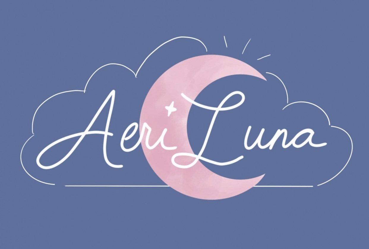 Ariane Nova's AeriLuna - student project