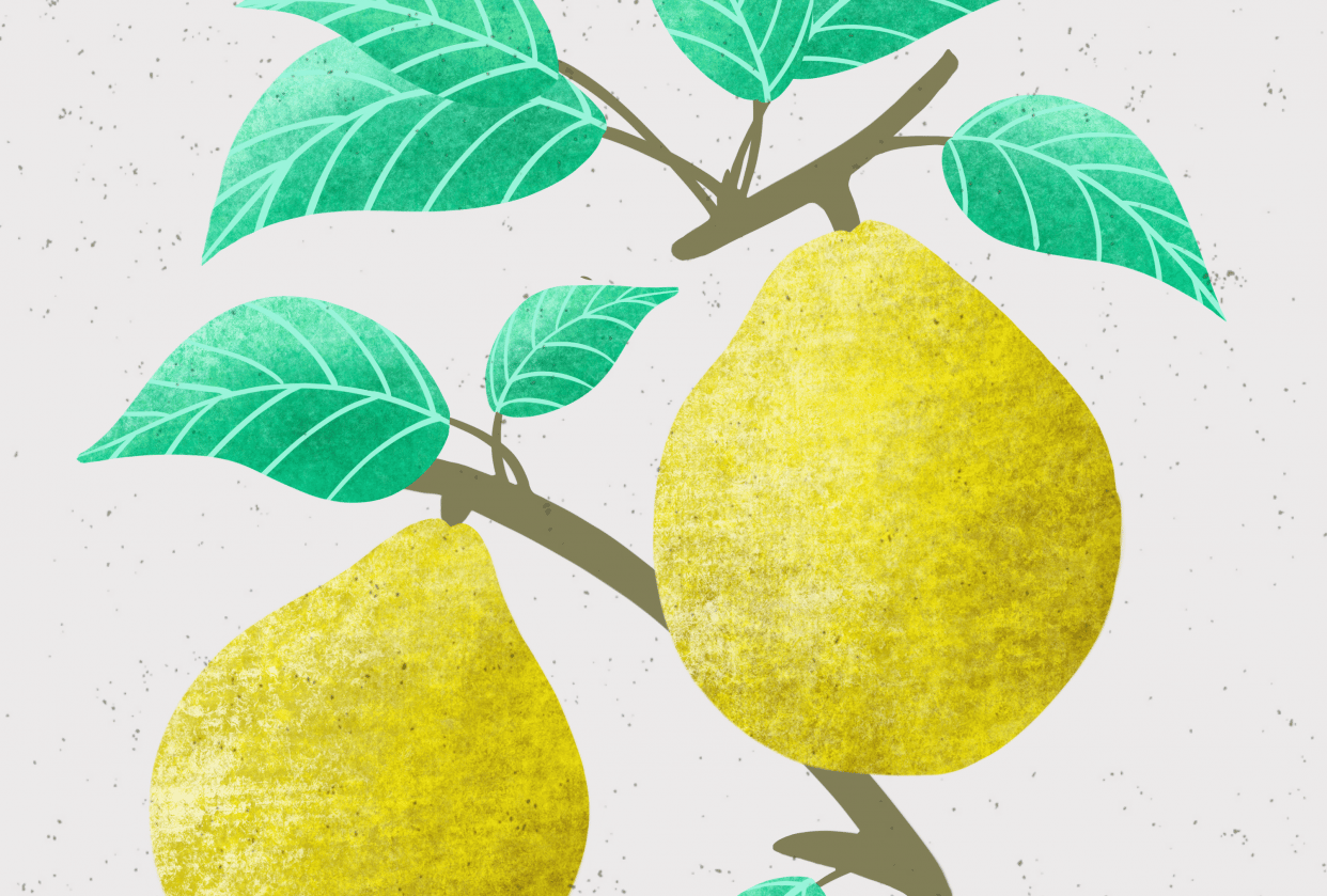 Textured vintage fruit - student project