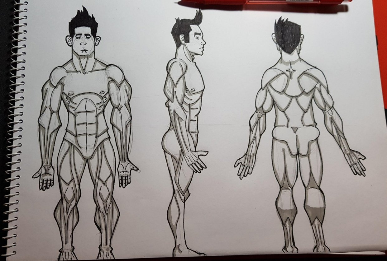 Male Figure Drawing - student project