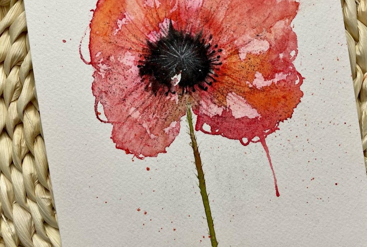 Poppy - student project