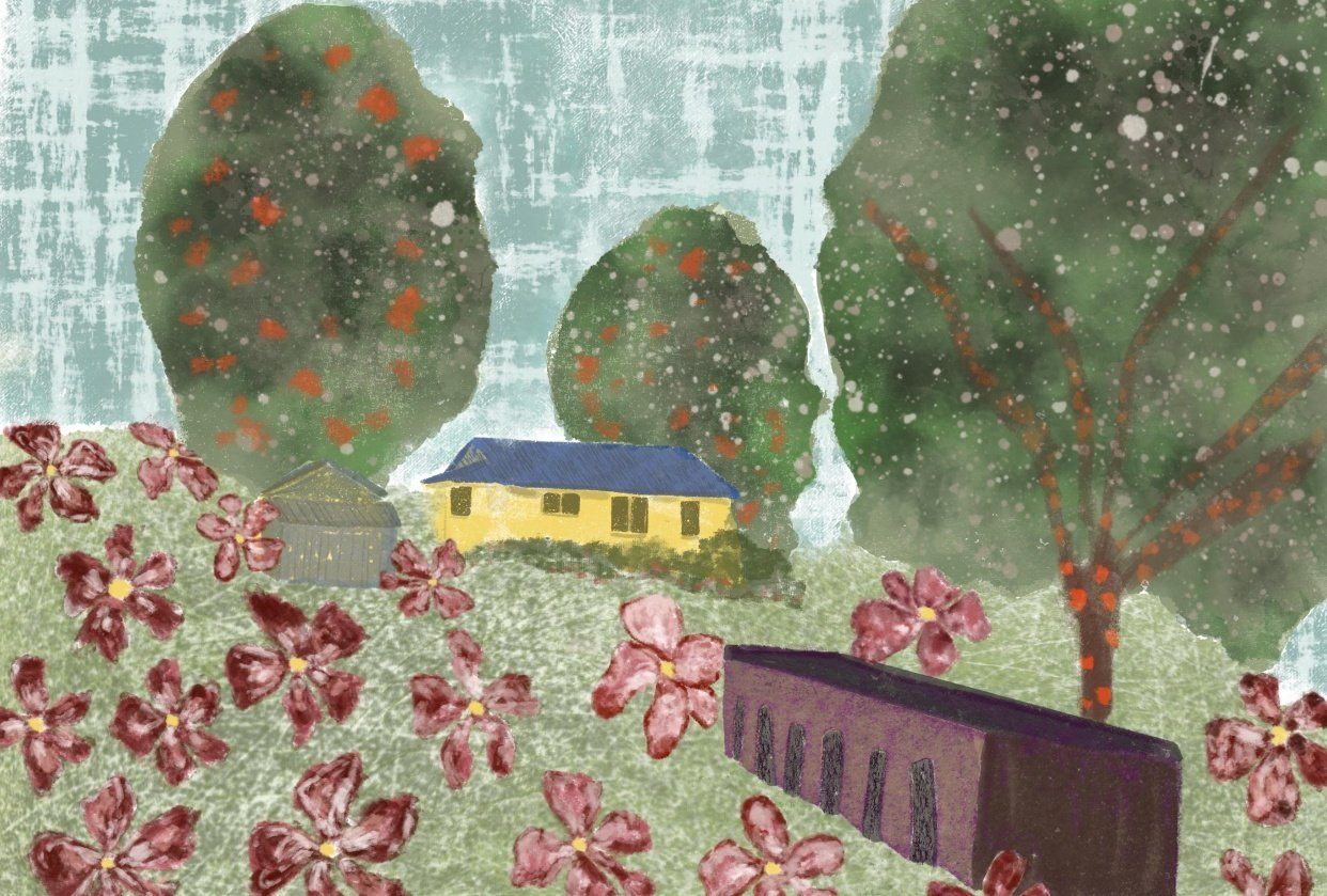 Landscape - student project