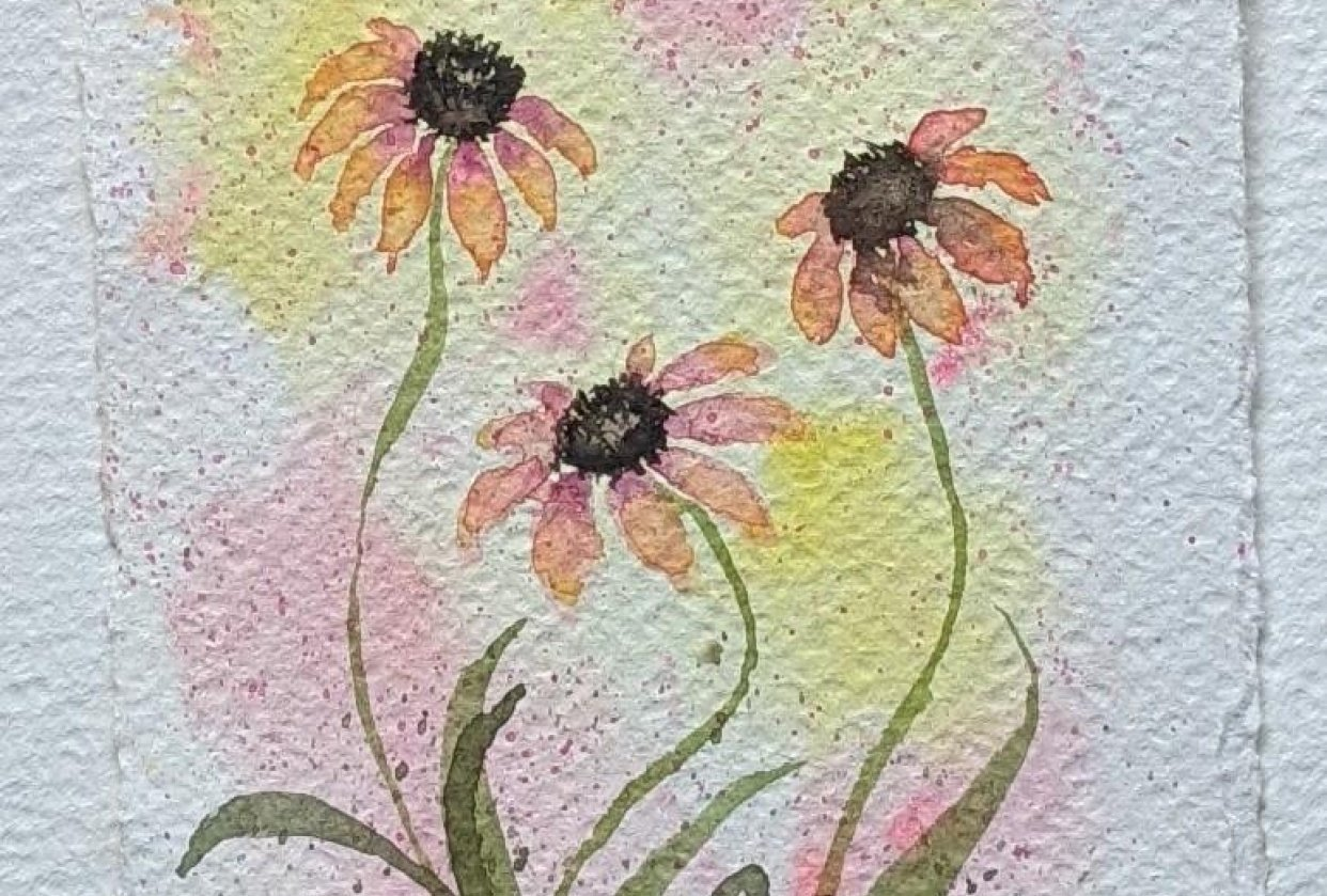 Coneflowers with Nina - student project