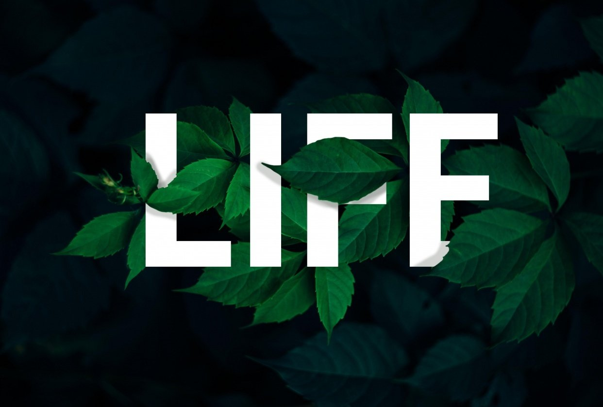 Life - student project