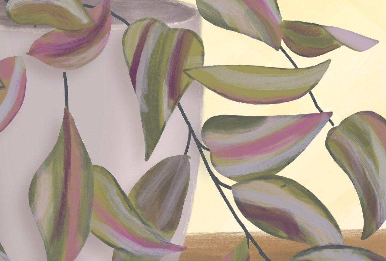 Illustrated Plants in Procreate - student project