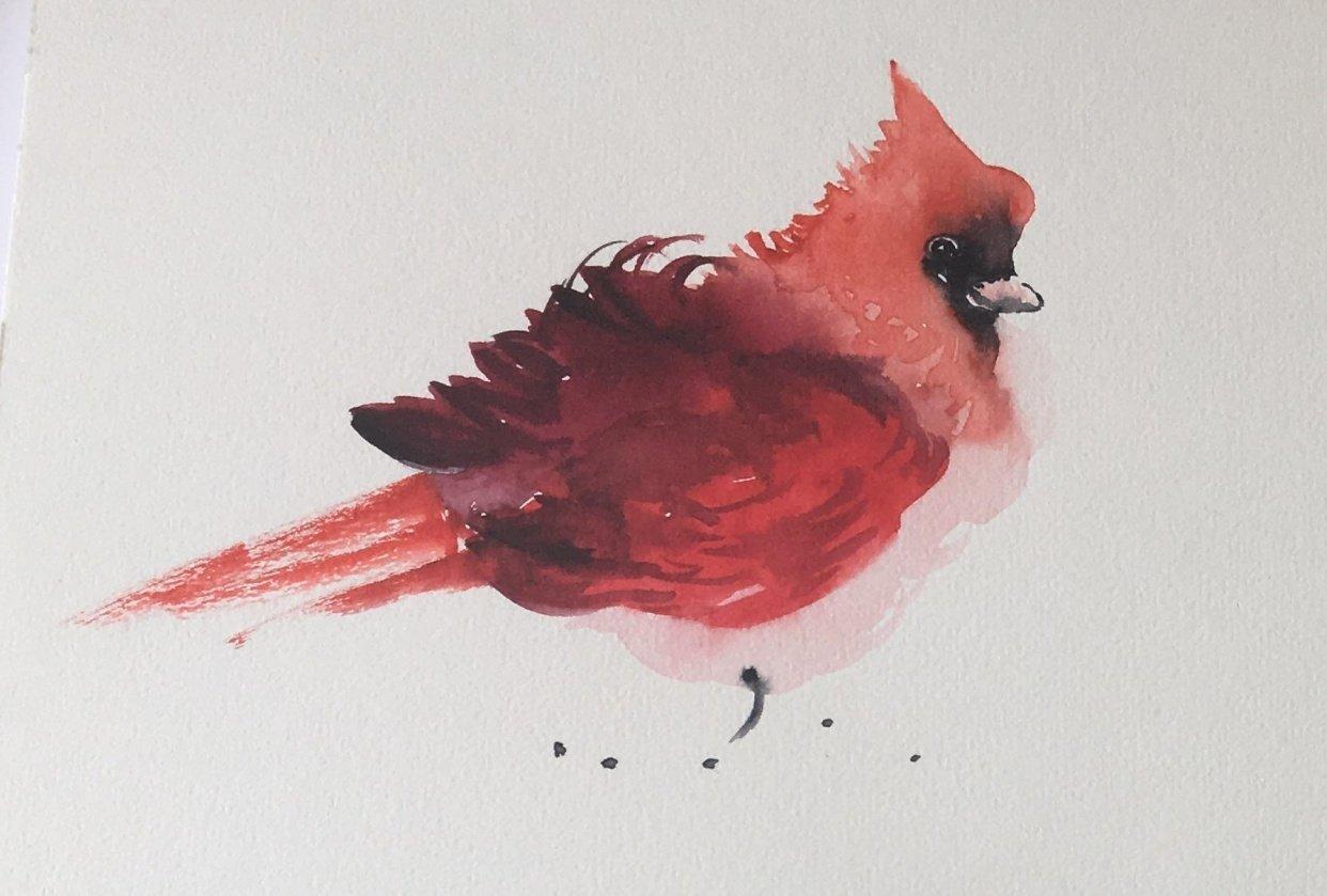 3 Vertical  Cardinal - student project