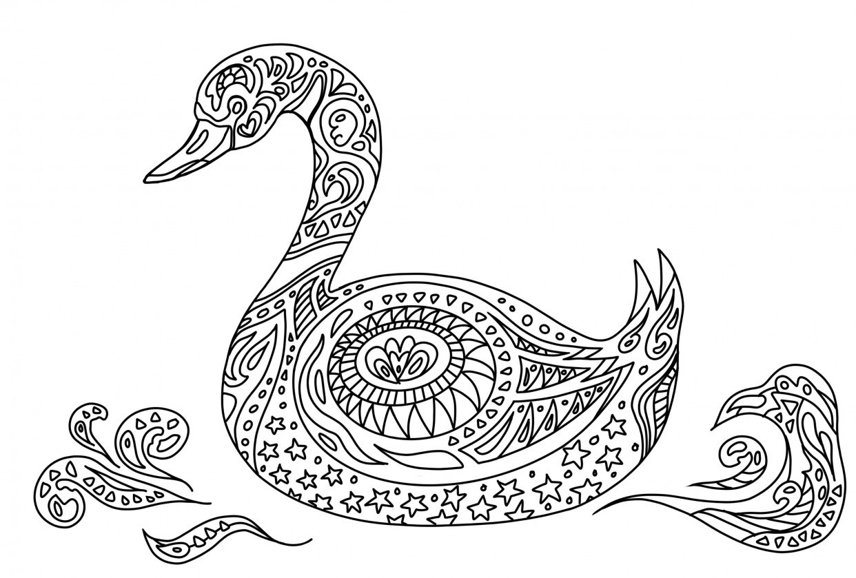 Colouring book - student project