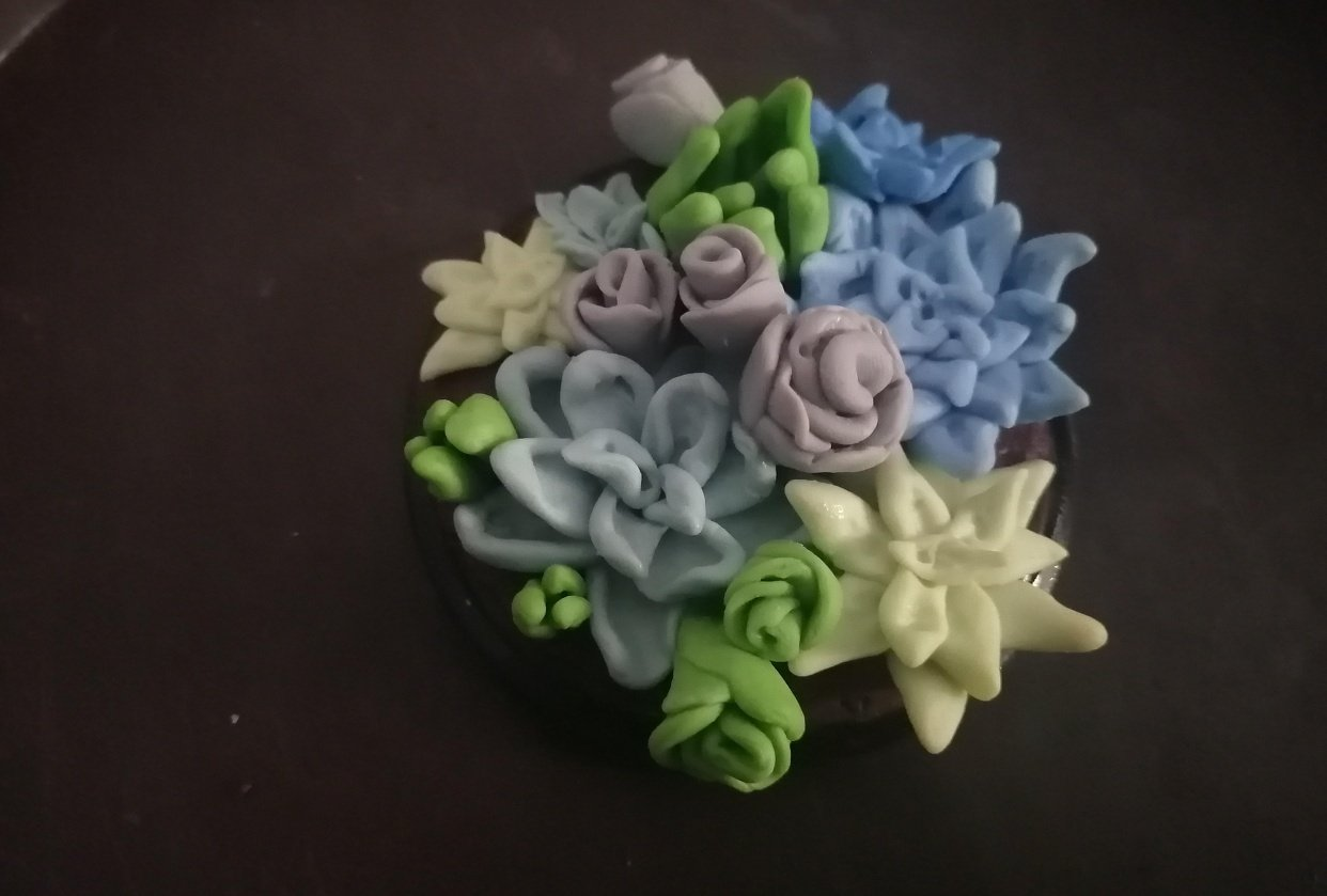 Succulence - student project