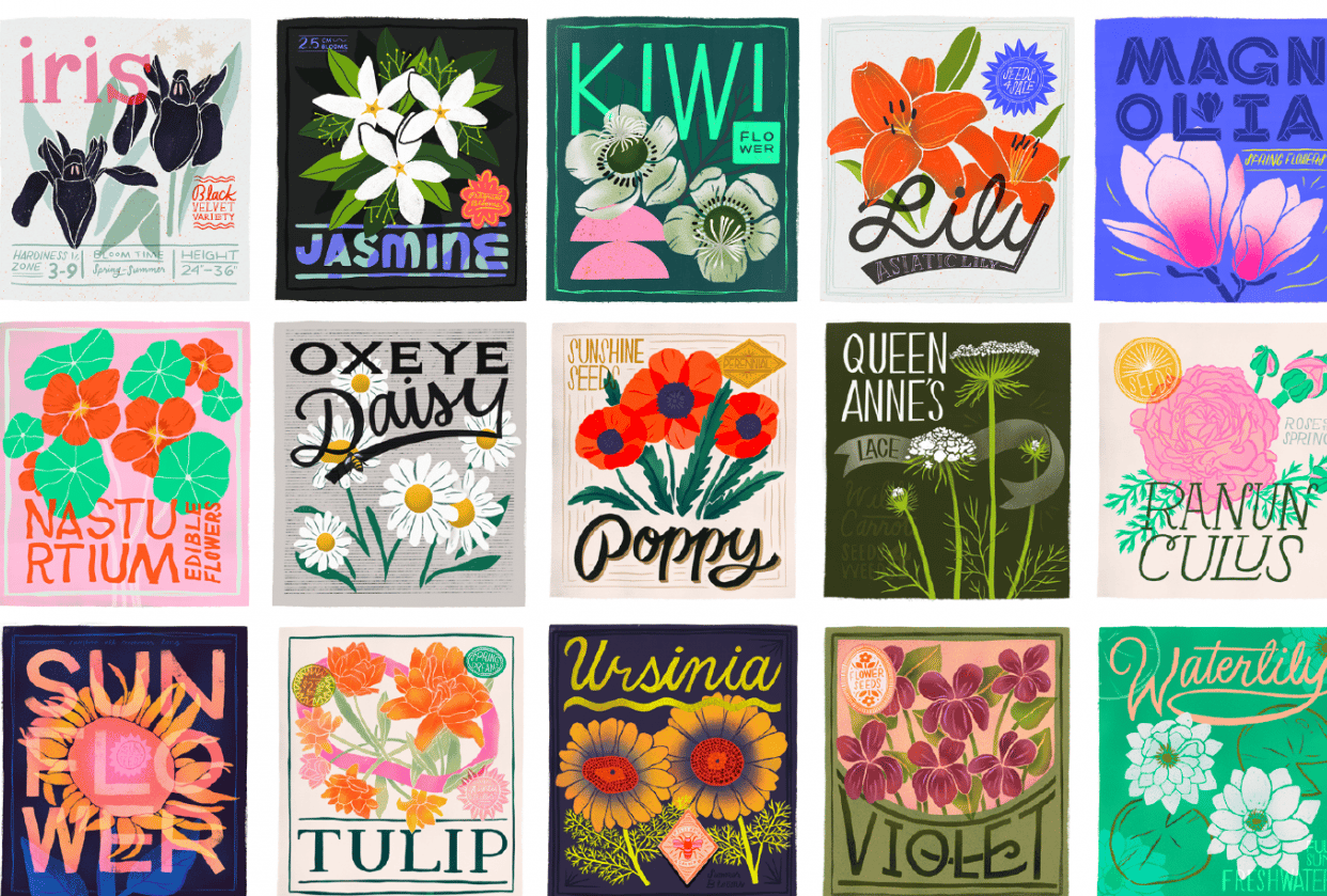 Seed Packet Illustrations - student project
