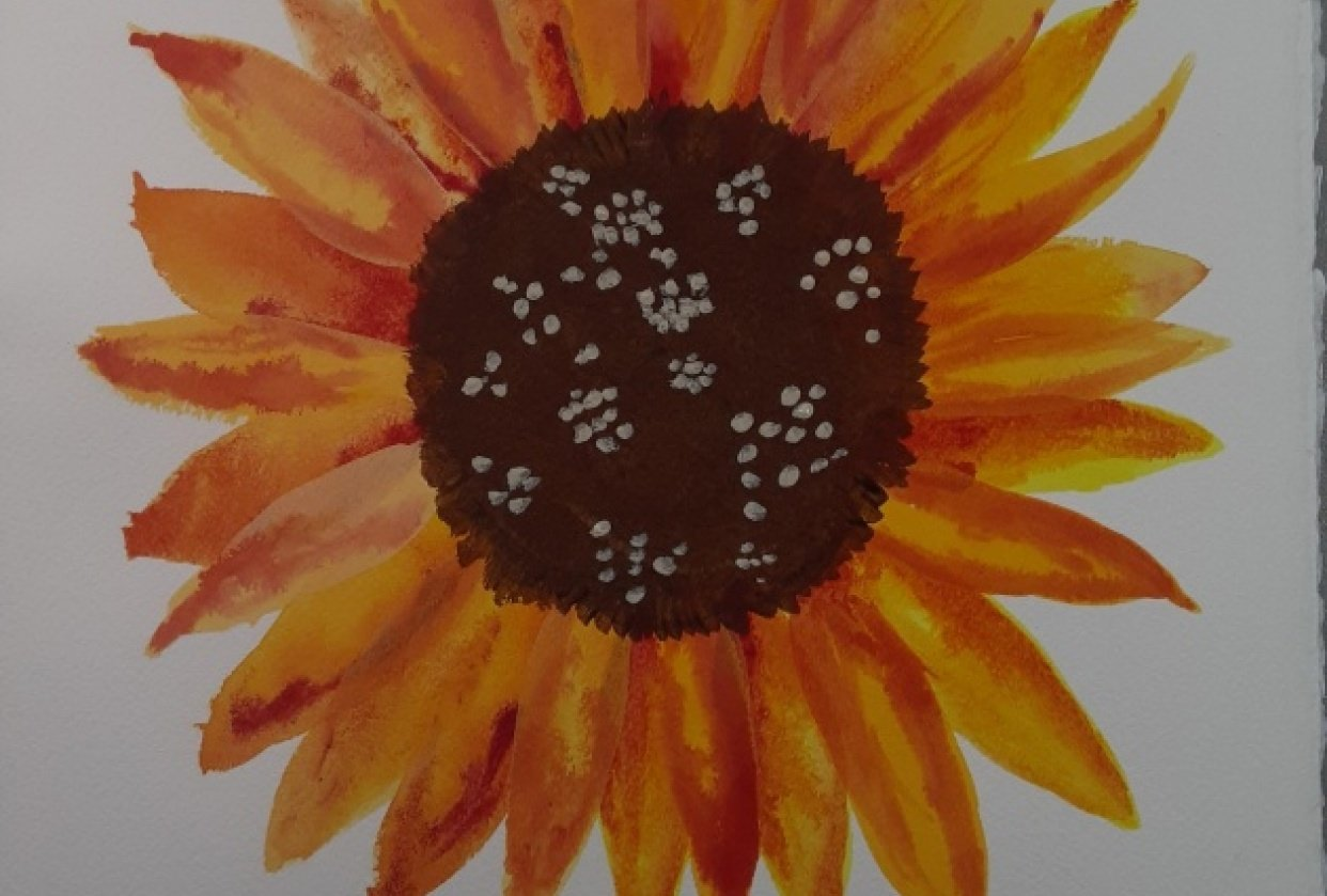 Watercolor Botanicals Project - student project