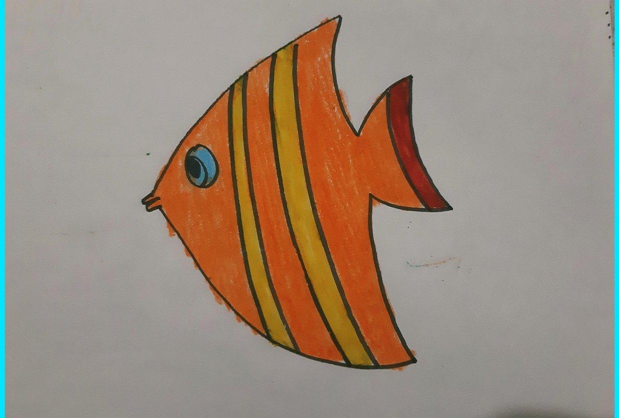 Aquatic Animal - student project