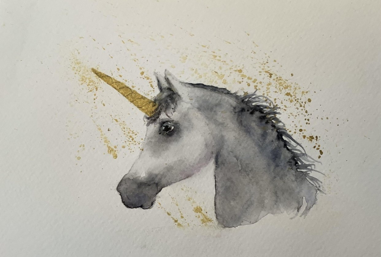 Unicorn - horse - student project