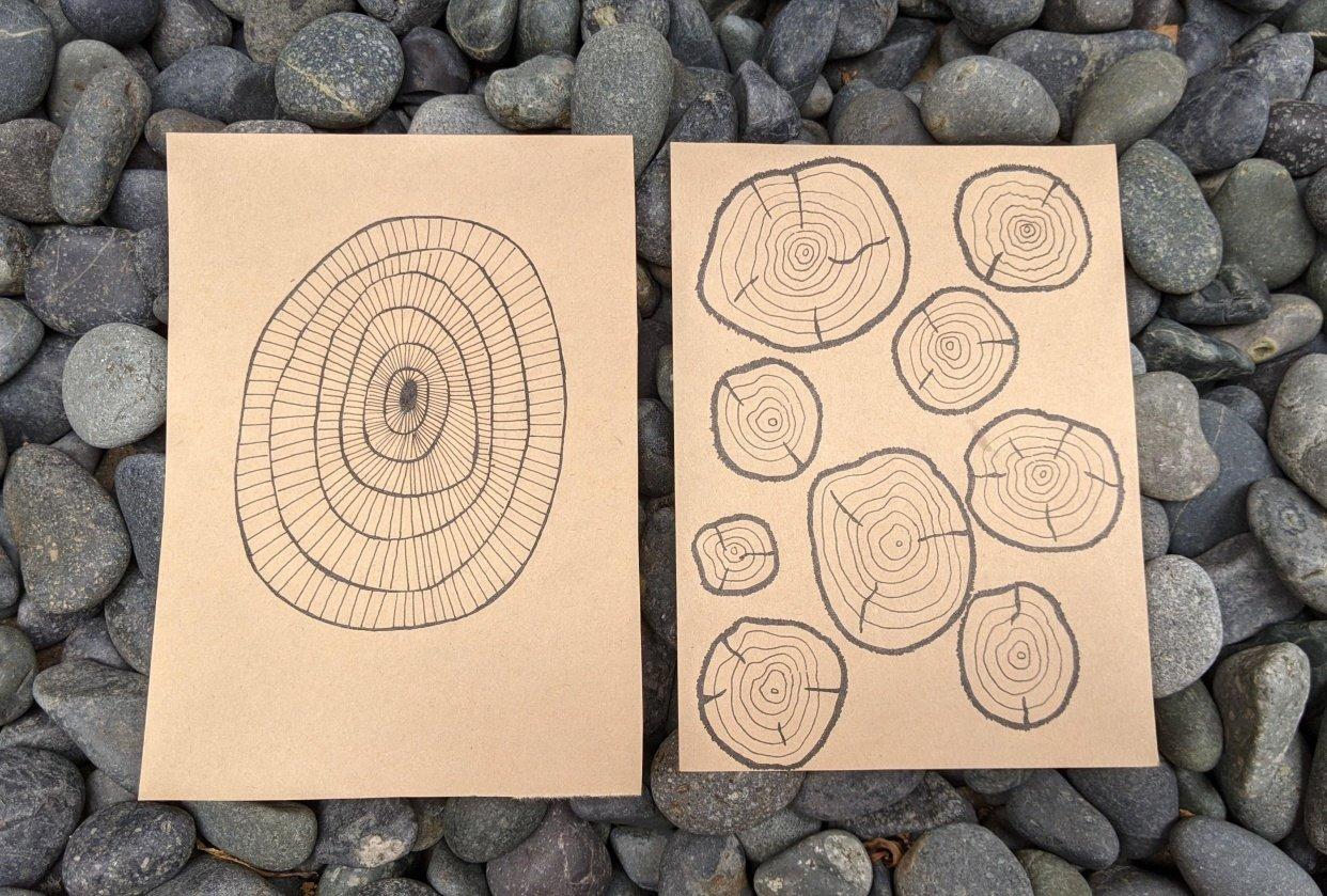 Tree rings meditation - student project