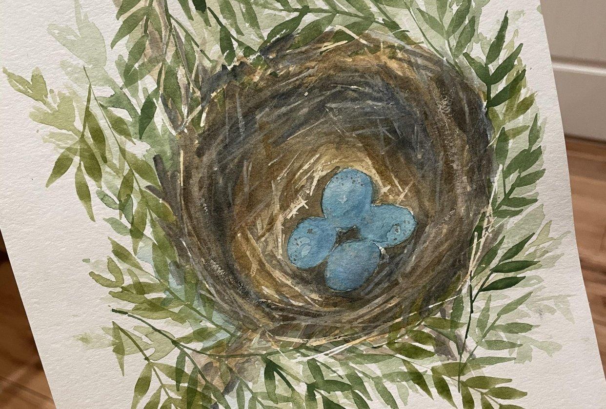 Watercolour Nest - student project