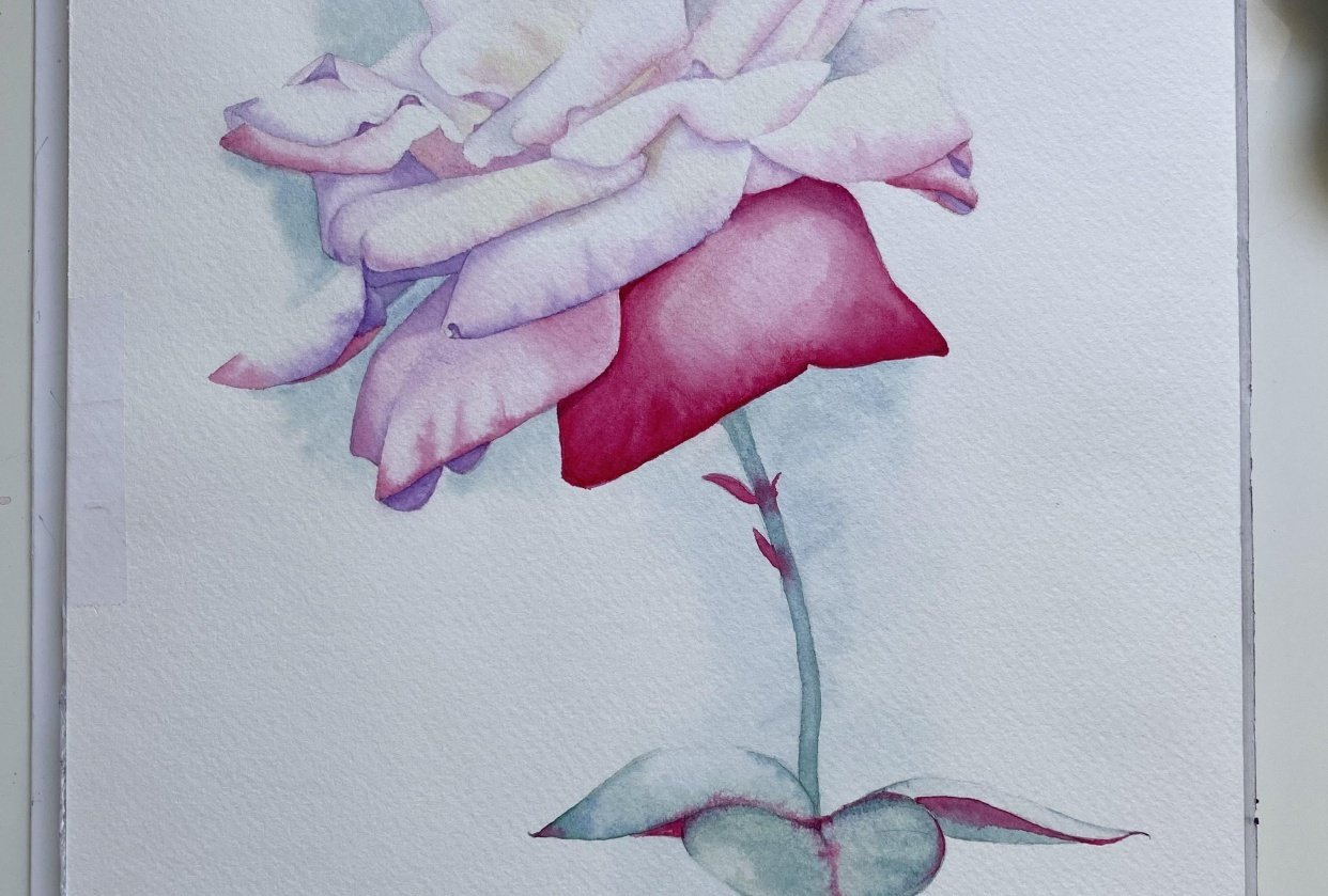 Watercolor Rose Ana T - student project