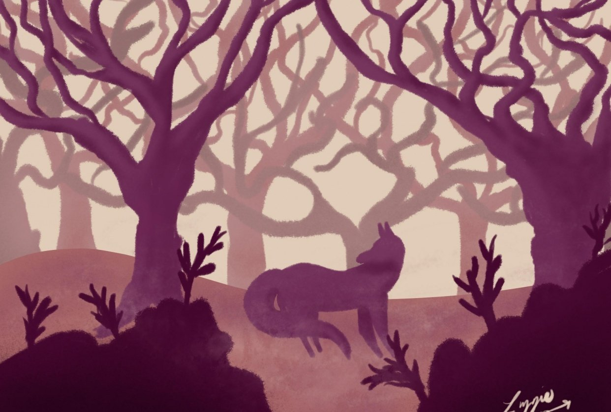 Foxy Forest - student project