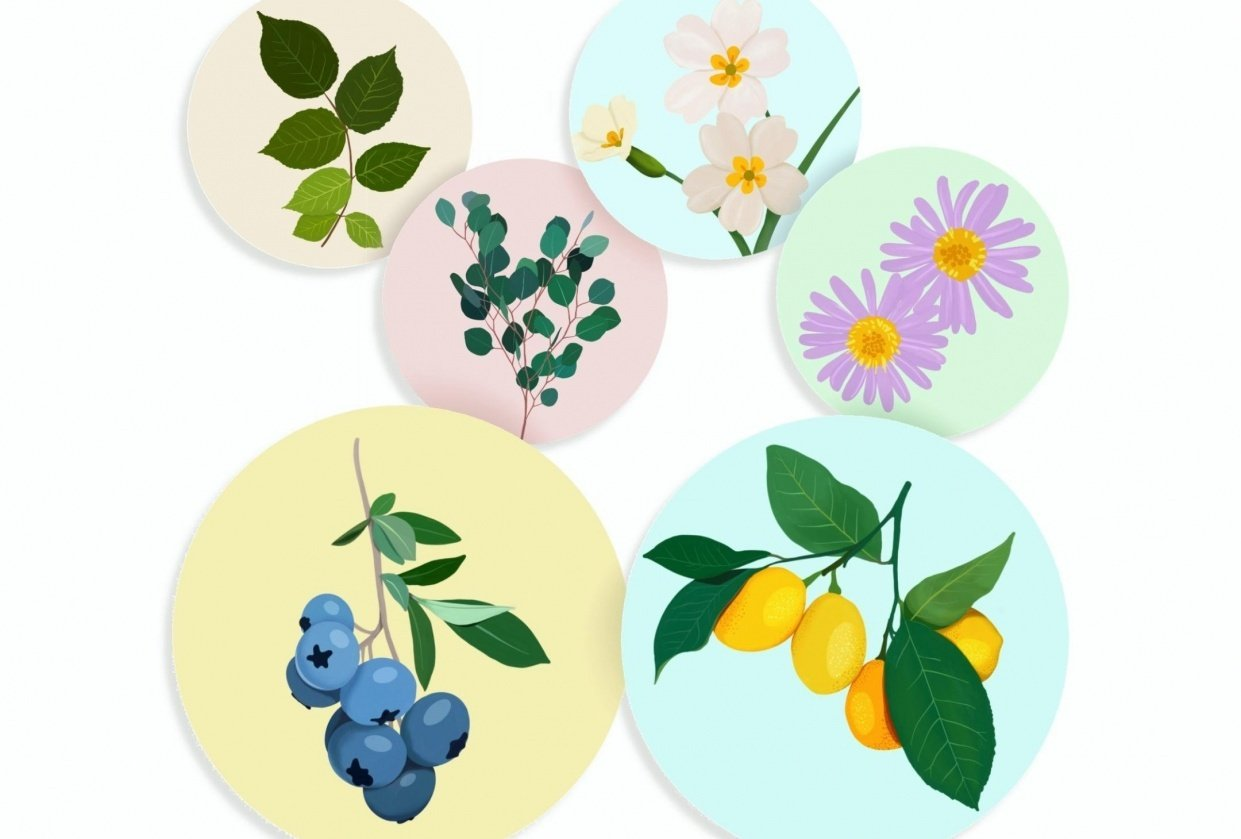 Intro to gouache - botanicals projects - student project