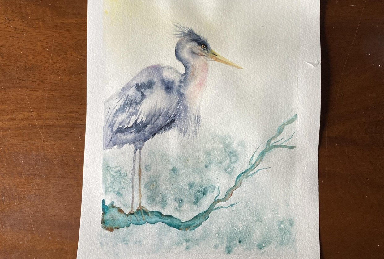 Wing the Heron - student project