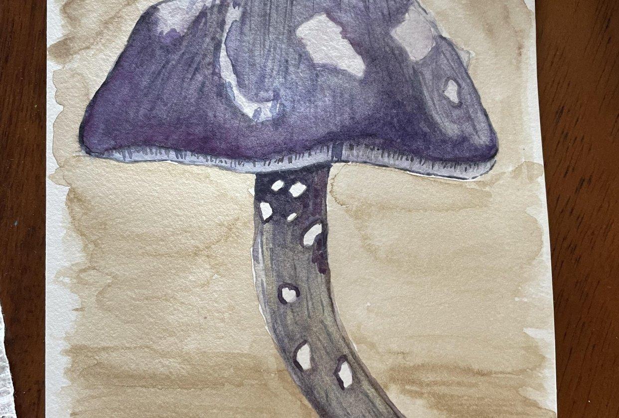 Mushroom card - student project