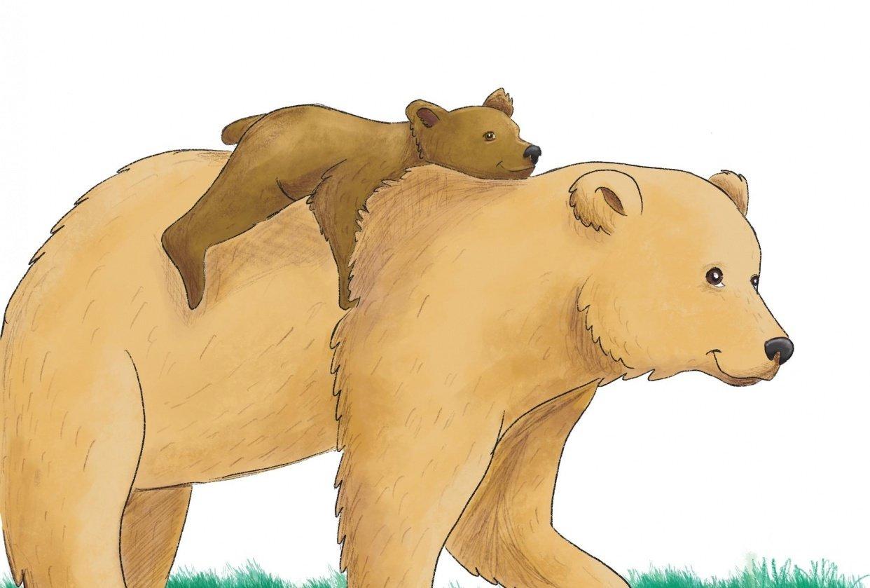 Mama bear - student project