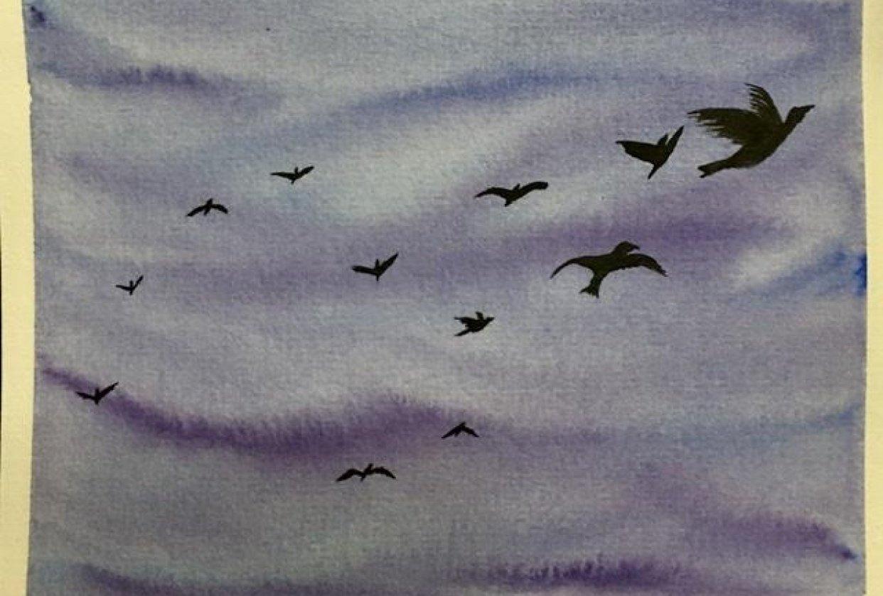 Watercolor Bird Practice - student project