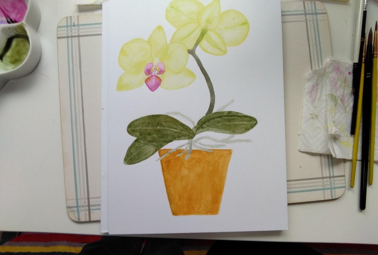 Orchid - student project