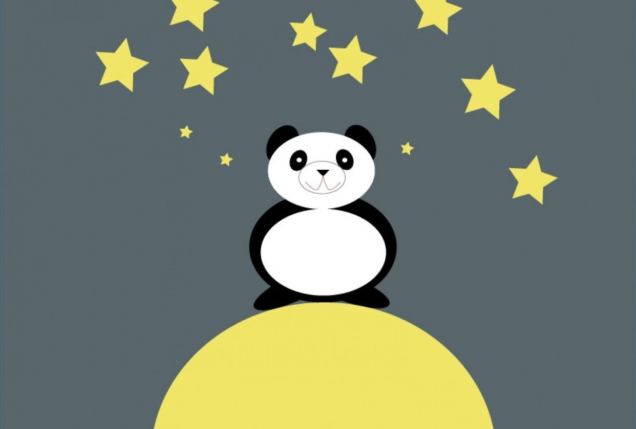 Panda on the moon - student project