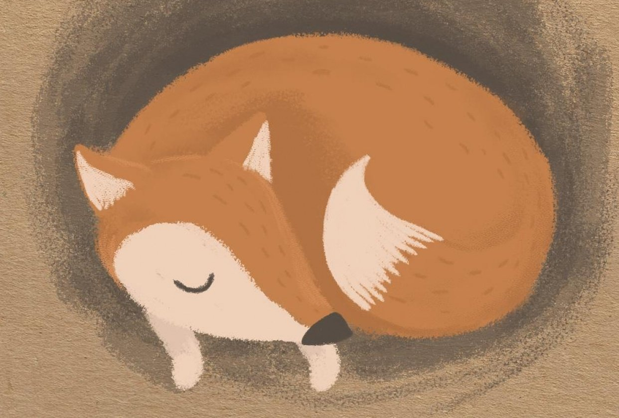 Dreaming fox - student project