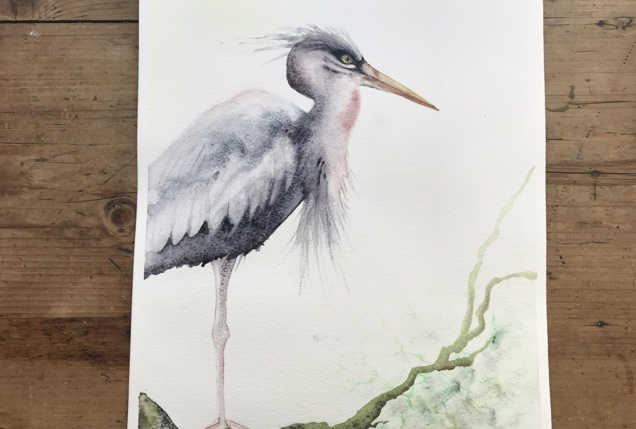 Mr heron - student project