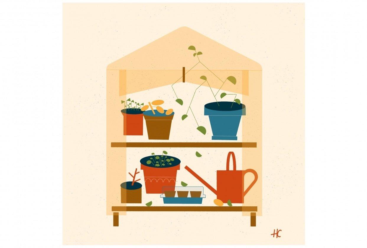 Mini Greenhouse - student project