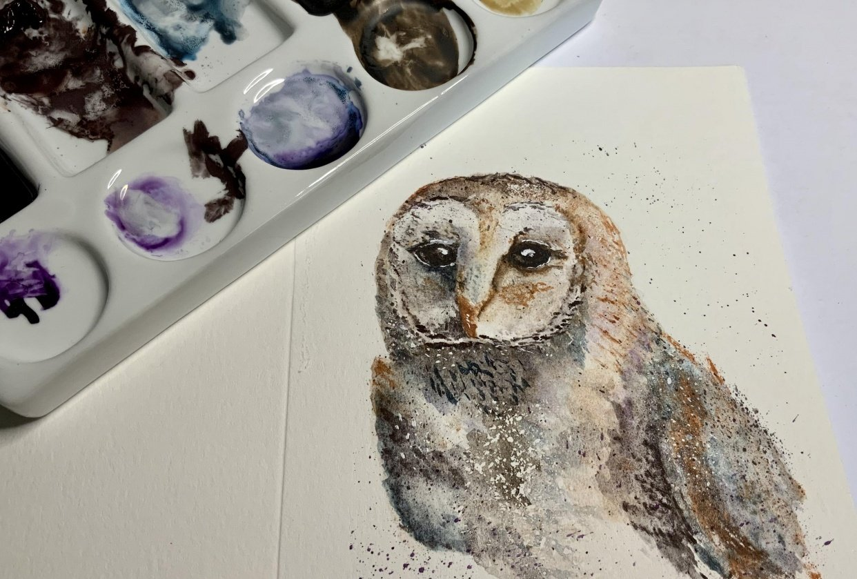 Barn owl second attempt - student project