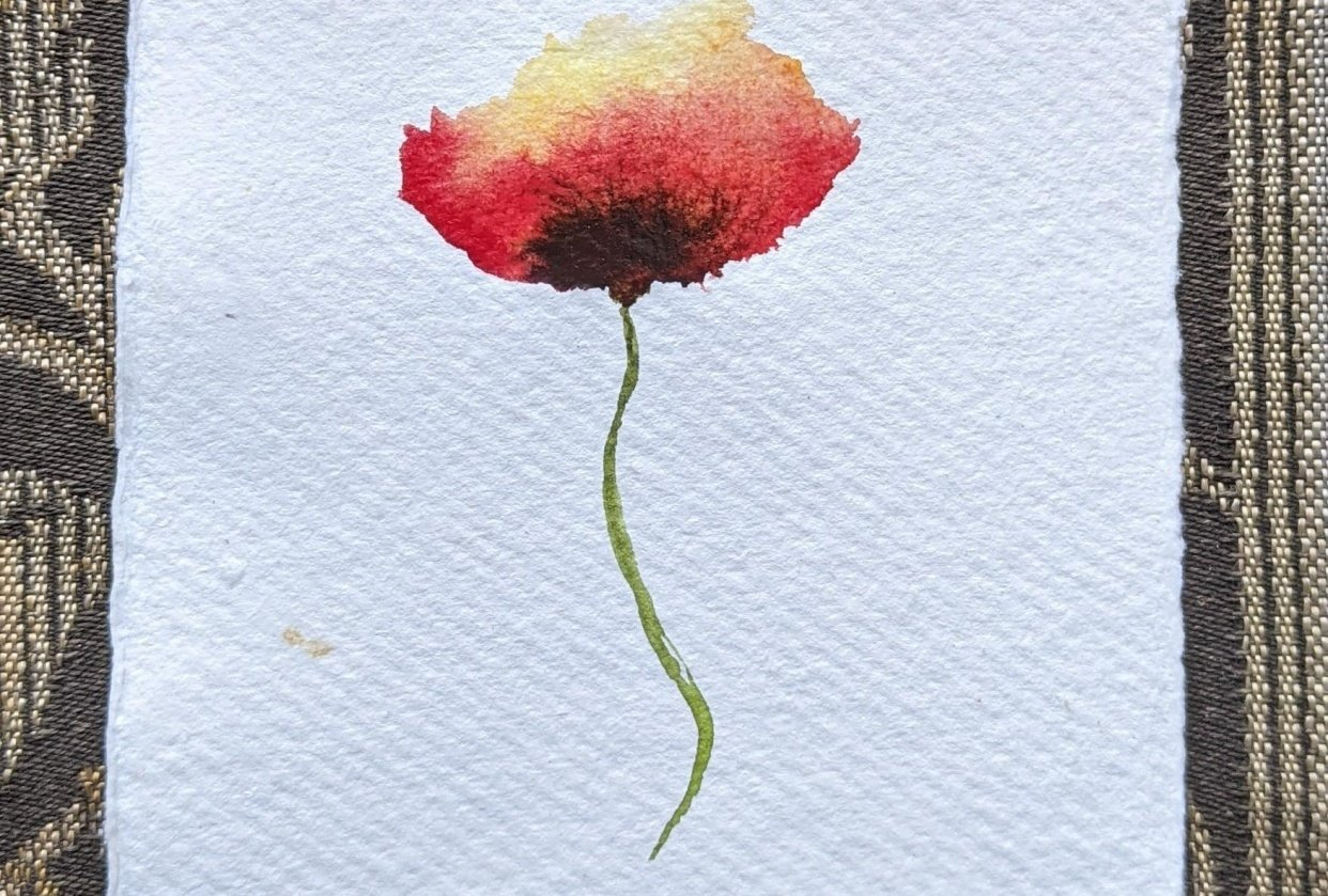 Loose poppy with Nina - student project