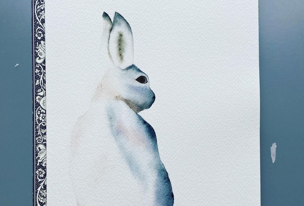 My snow hare - student project