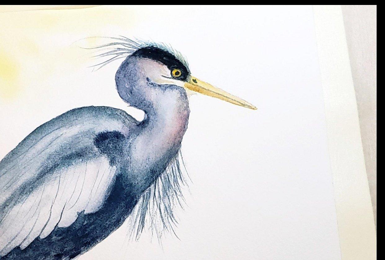Harriett the Heron - student project
