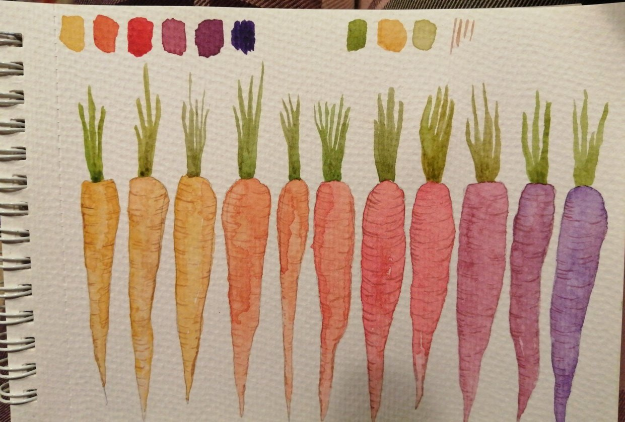 Heritage carrots - student project