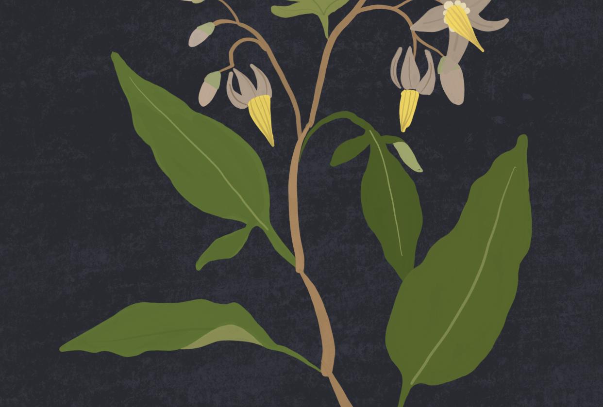 Gouache floral - student project