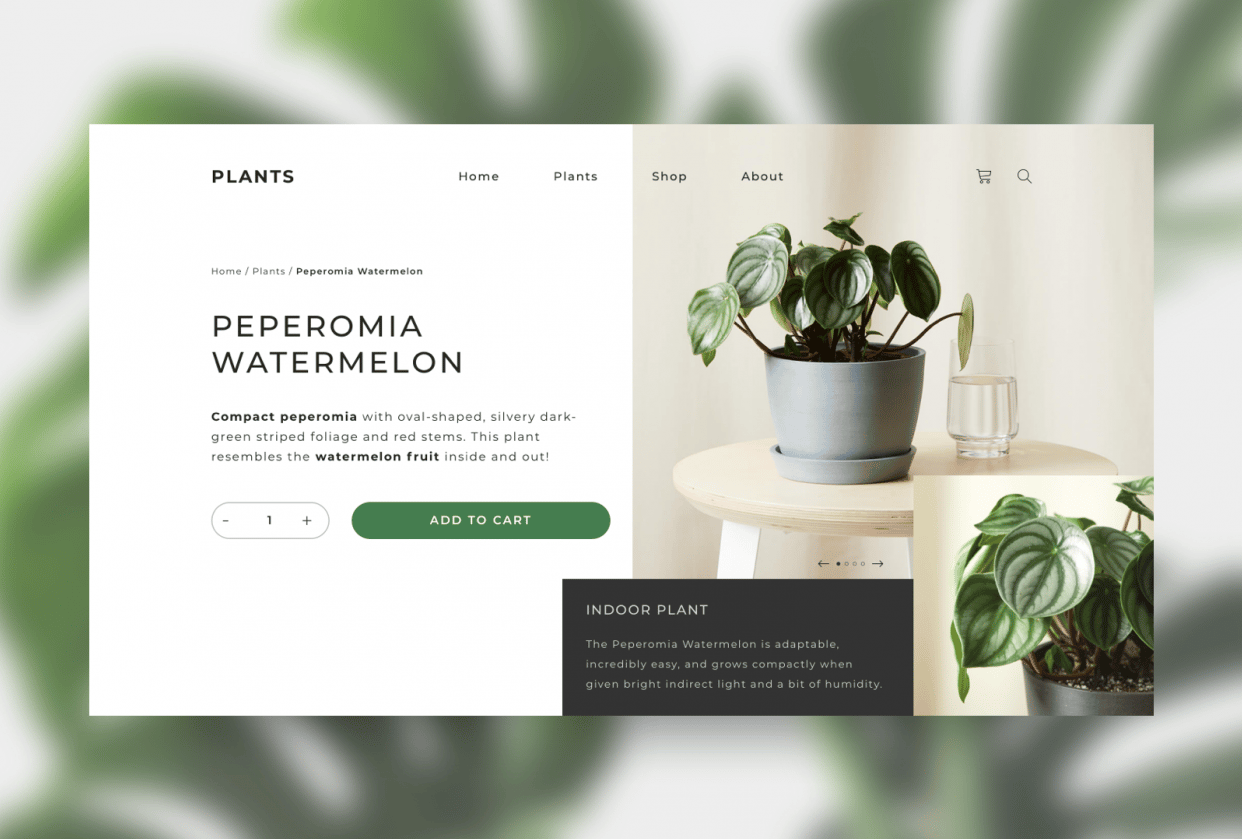 Homepage Plants - student project