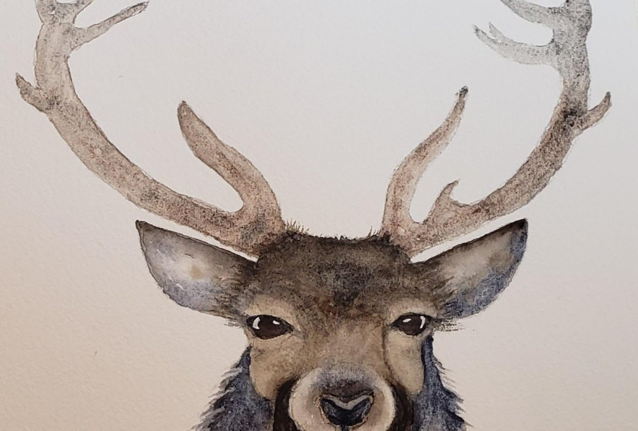 Stanley the Stag. - student project