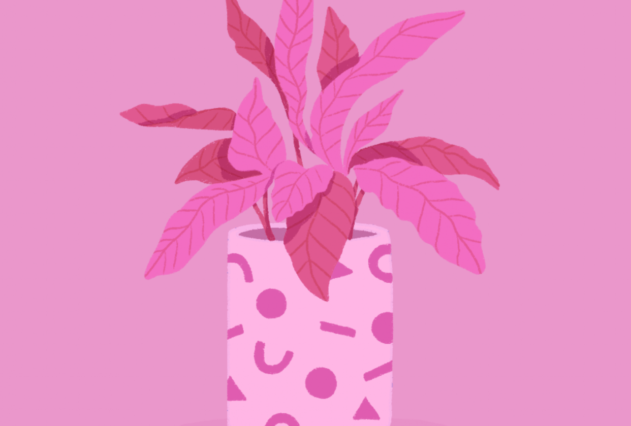 Plant - student project
