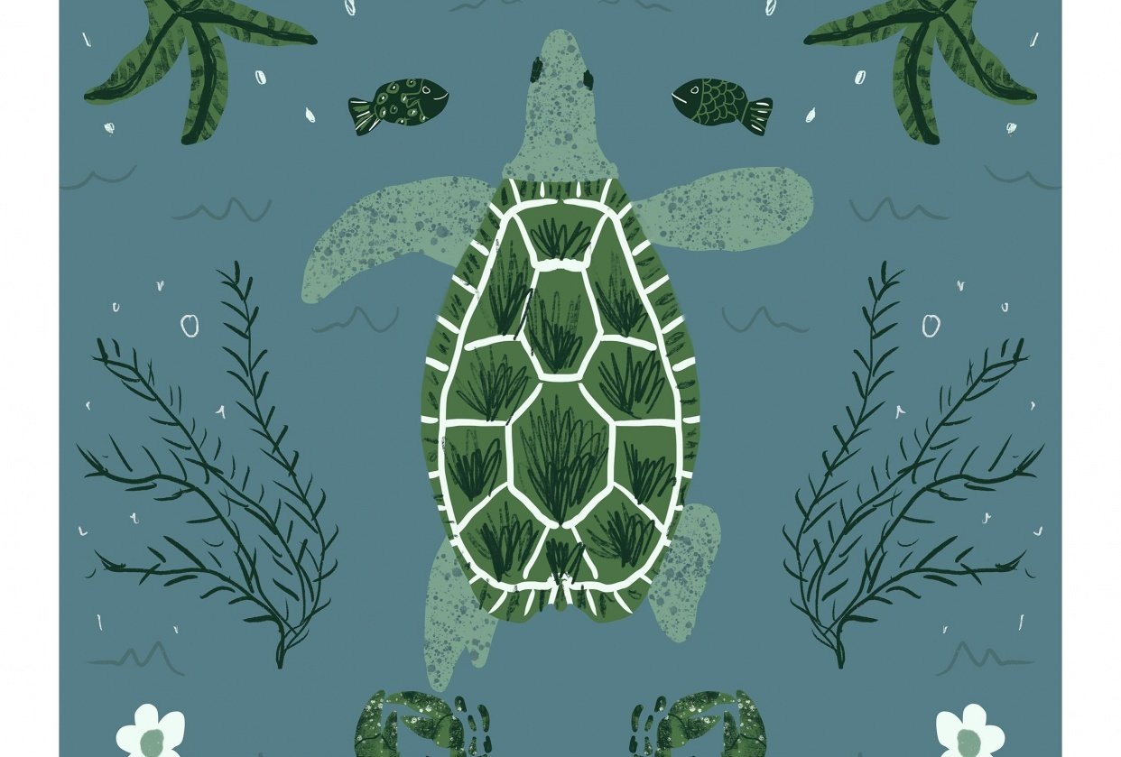 Fun with Symmetry - Turtle! - student project